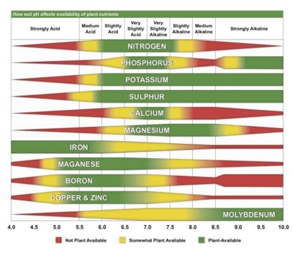 nutrient-availability-ph-chart