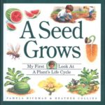 book_cover_A_Seed_Grows_Pamela_Hickman