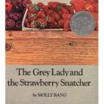 book_cover_The_Grey_Lady_Molly_Bang