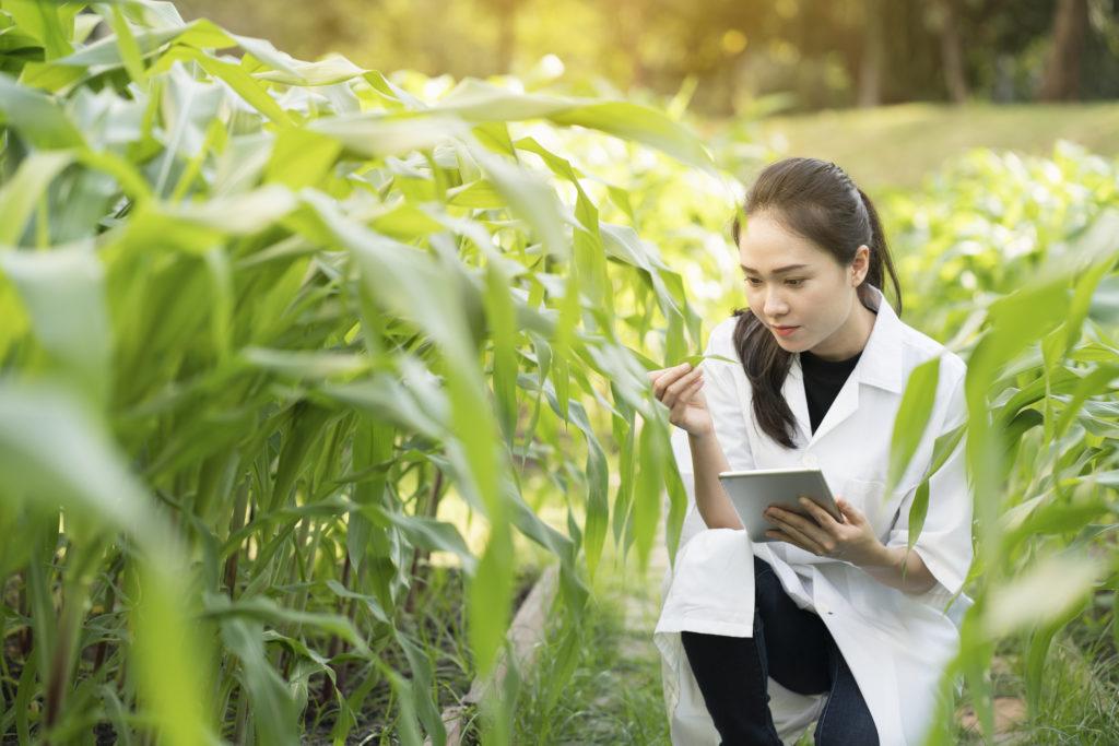 environmental health inspector